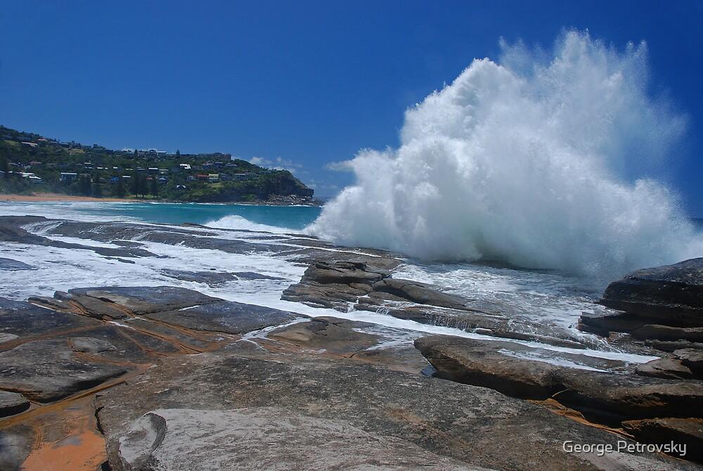 Whale Beach Wave # 1 by George Petrovsky
