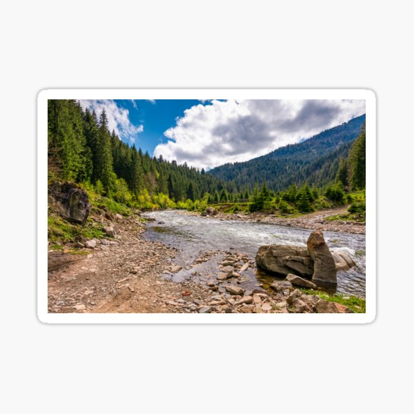 forest river with stones on shores Sticker
