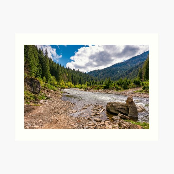 forest river with stones on shores Art Print