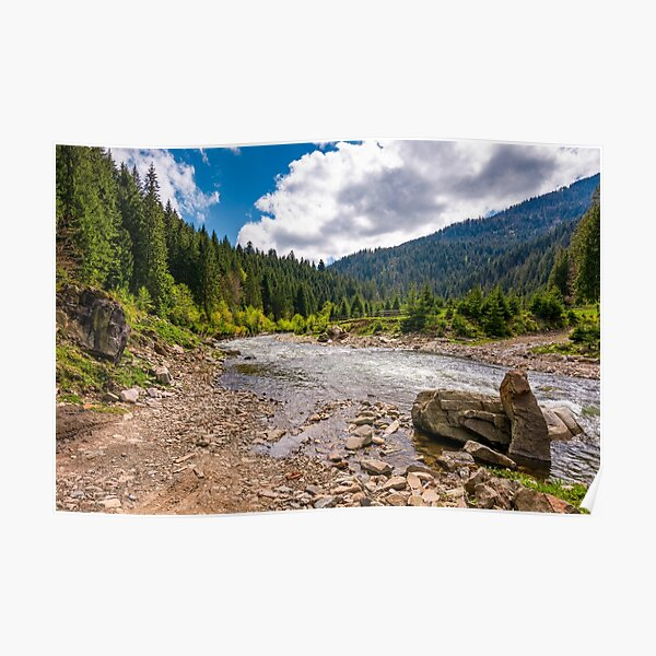 forest river with stones on shores Poster