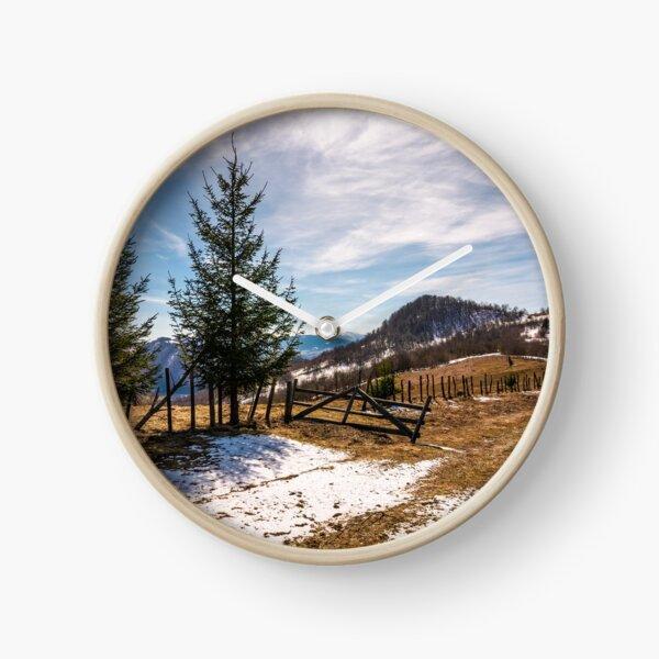 spruce trees near the fence on hillside Clock