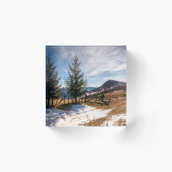 spruce trees near the fence on hillside Acrylic Block
