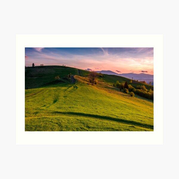 grassy pasture on hillside at sunset Art Print