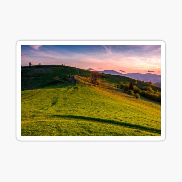 grassy pasture on hillside at sunset Sticker