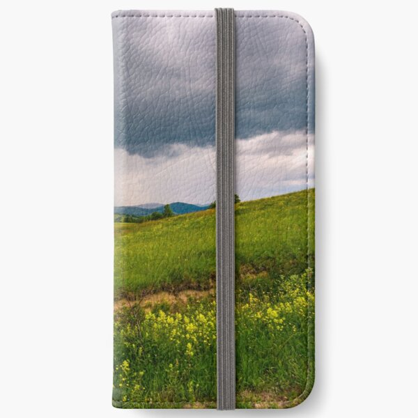 grassy pasture near the forest in stormy weather iPhone Wallet