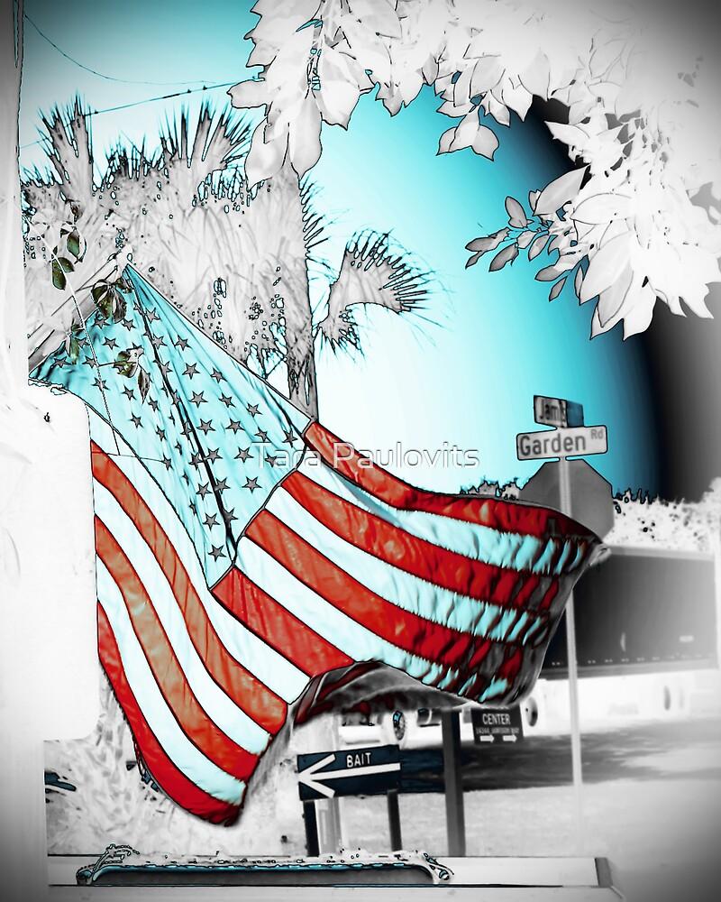 America by Tara Paulovits
