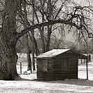 Log cabin by Pamela Hubbard