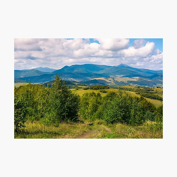 beautiful countryside of Crapathians  Photographic Print
