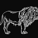 lion  by voomoo