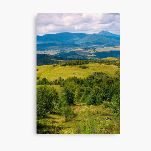 beautiful countryside of Crapathians  Canvas Print