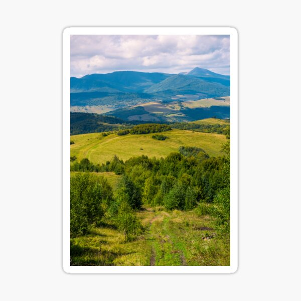 beautiful countryside of Crapathians  Sticker
