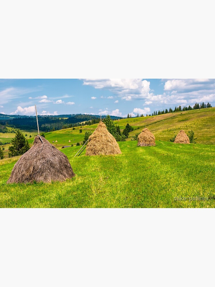 haystacks in a row on a grassy field by mike-pellinni