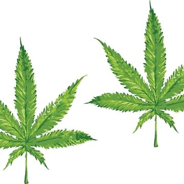 lit 420 leaf pattern  by kushcoast