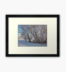 Frozen scenes Framed Print