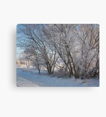 Frozen scenes Canvas Print