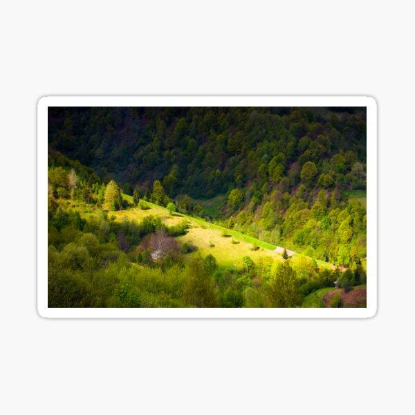 spot of light on forested hillside Sticker
