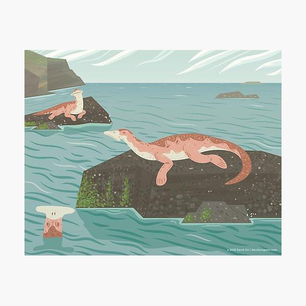 Atopodentatus by the Sea Photographic Print