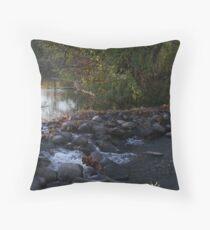 Stream Crossing Throw Pillow