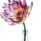 Flower power by gregvanderLeun