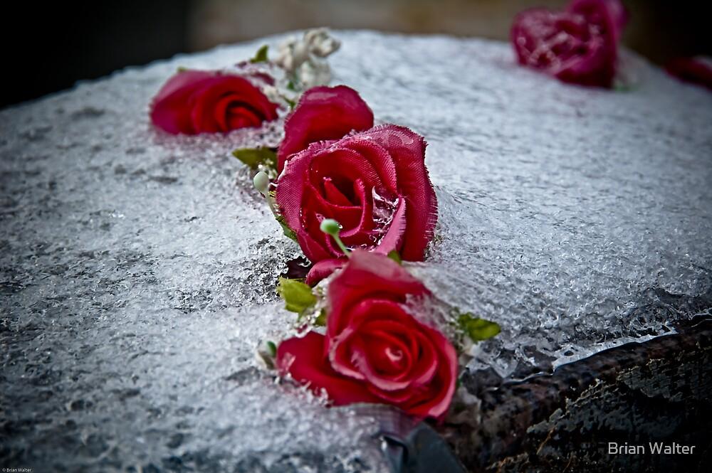 Ribbon Of Roses by Brian Walter
