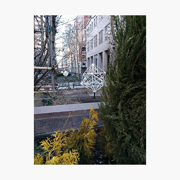Street, City, Buildings, Photo, Day, Trees Photographic Print