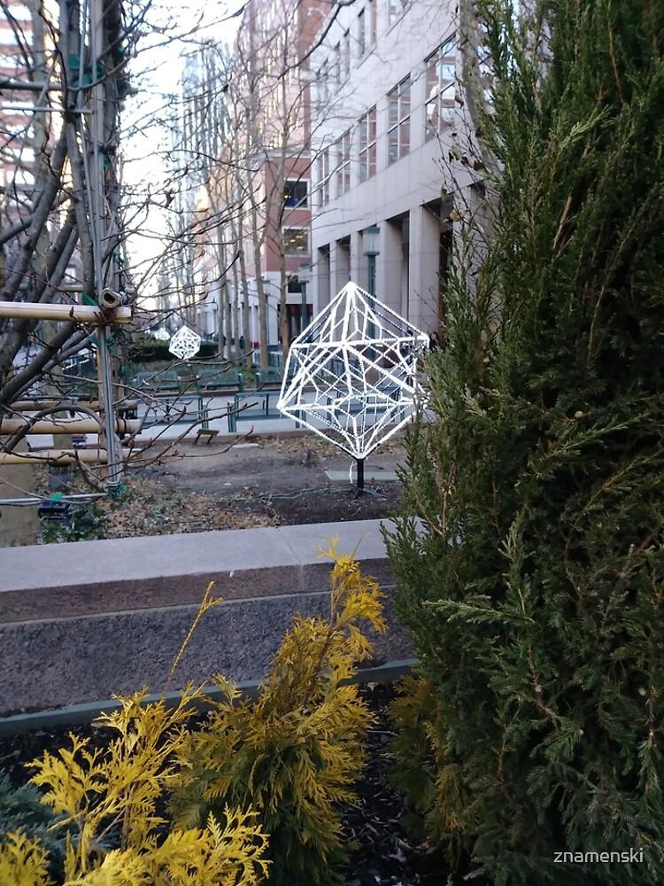 Street, City, Buildings, Photo, Day, Trees by znamenski