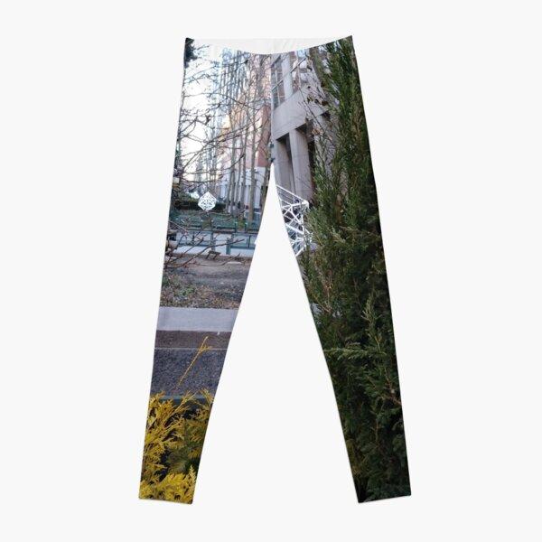 Street, City, Buildings, Photo, Day, Trees Leggings