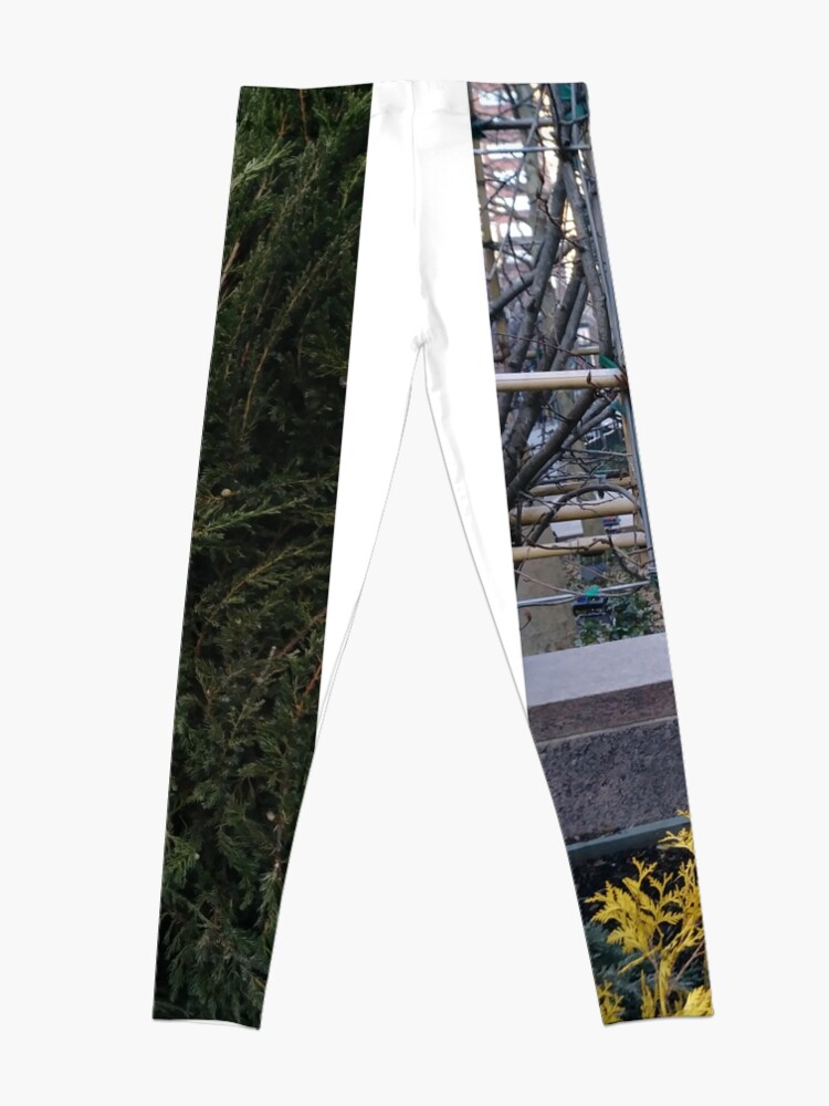 Alternate view of Street, City, Buildings, Photo, Day, Trees Leggings