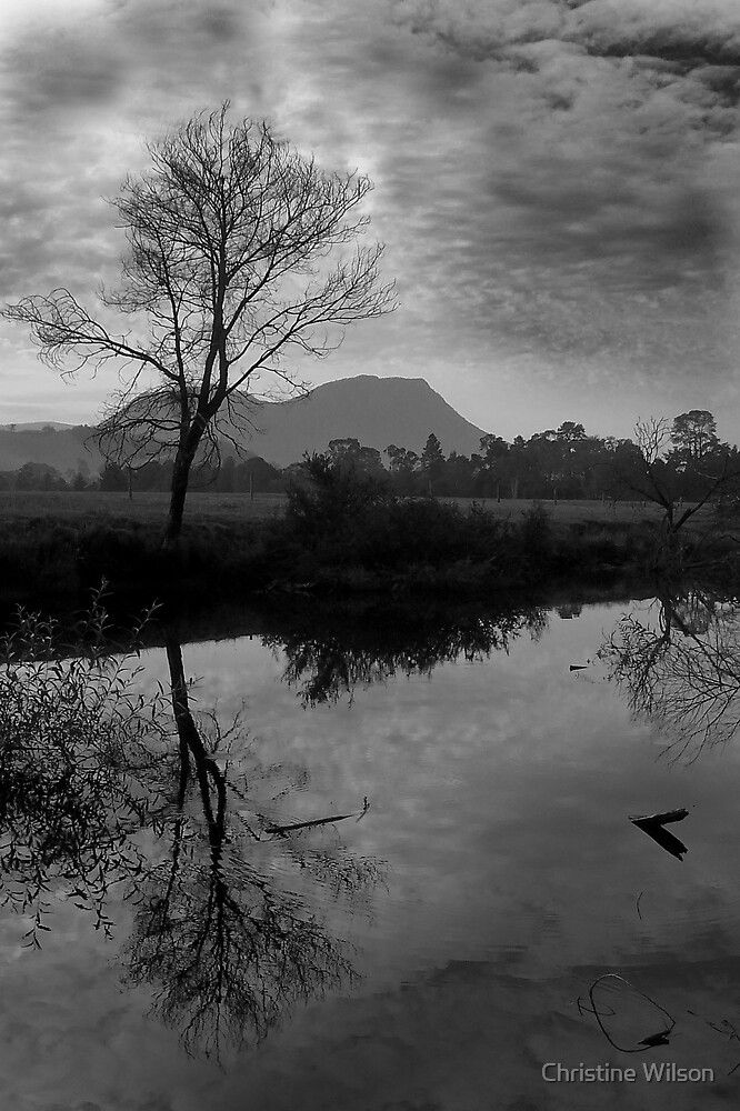 Taggarty River   by Christine Wilson