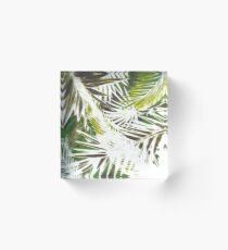 TROPICAL PUNCH LIME  Acrylic Block