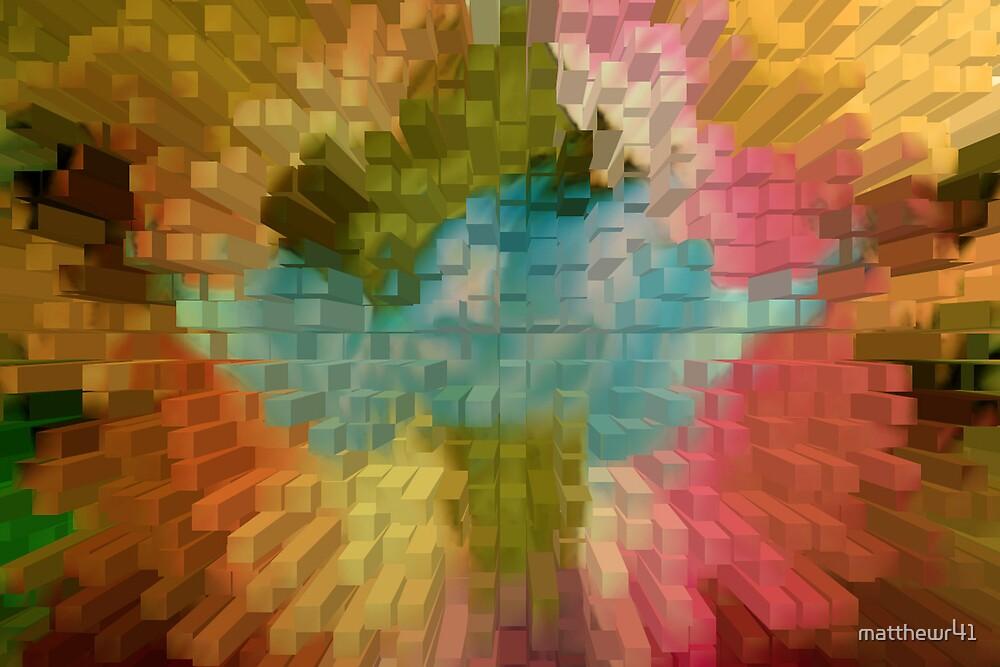 flowers by matthewr41