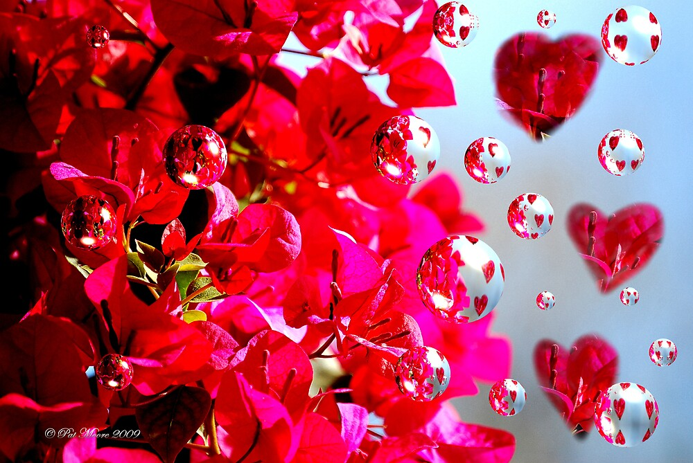 The Love of Red by Pat Moore