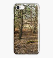 Winter Woodland iPhone Case/Skin