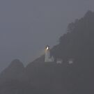 Heceta Head Lighthouse, at dusk and in the fog by aussiedi