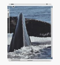 Eternal Moment At Sea iPad Case/Skin