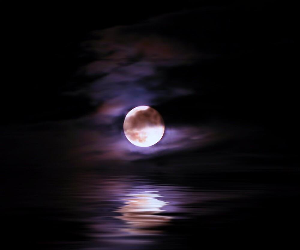 Moon Rise 2 by bluefinart