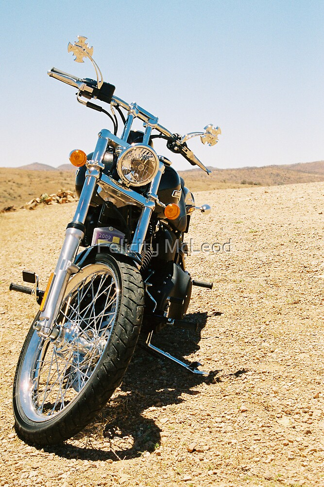 Front View: Harley Davidson by Felicity McLeod