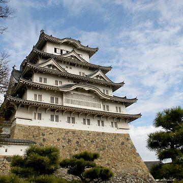 Himeji Castle - Japan by dennischoong