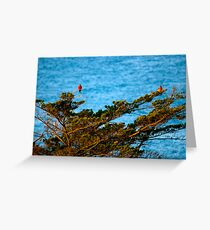 Colourful Characters Greeting Card