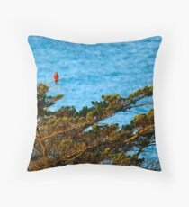 Colourful Characters Throw Pillow