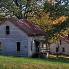 Henry River Mill Houses by Jane Best