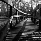Psalm 27:11 by Michael Reimann