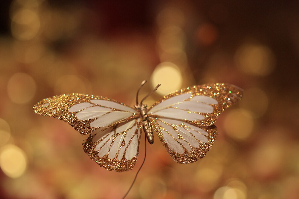 golden fly by malina