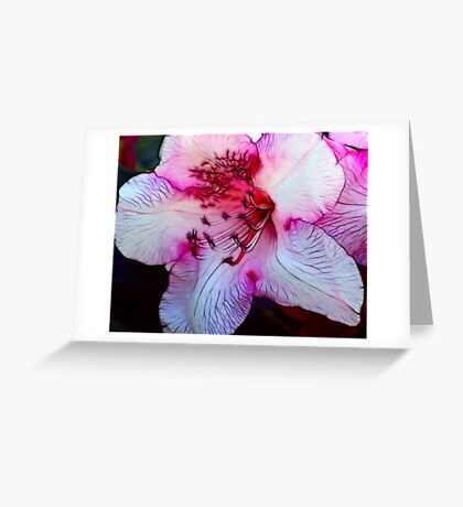 Nearly Pink Greeting Card