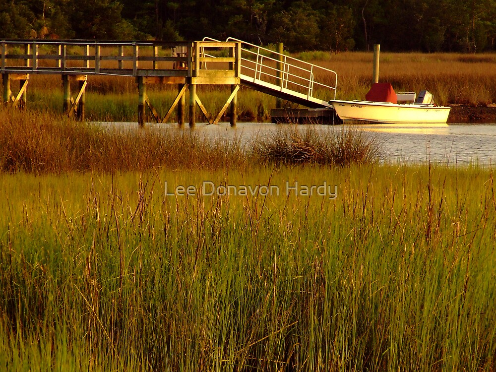 Late Light in the Marsh by Lee Donavon Hardy