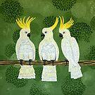 Cockatoos  by Lisafrancesjudd