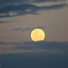 Clouded Moon Rise by Em Donaldson