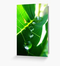 Marching Drops Greeting Card