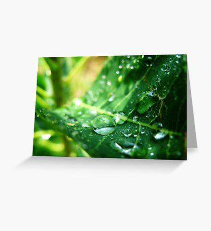 Drip Drop Greeting Card