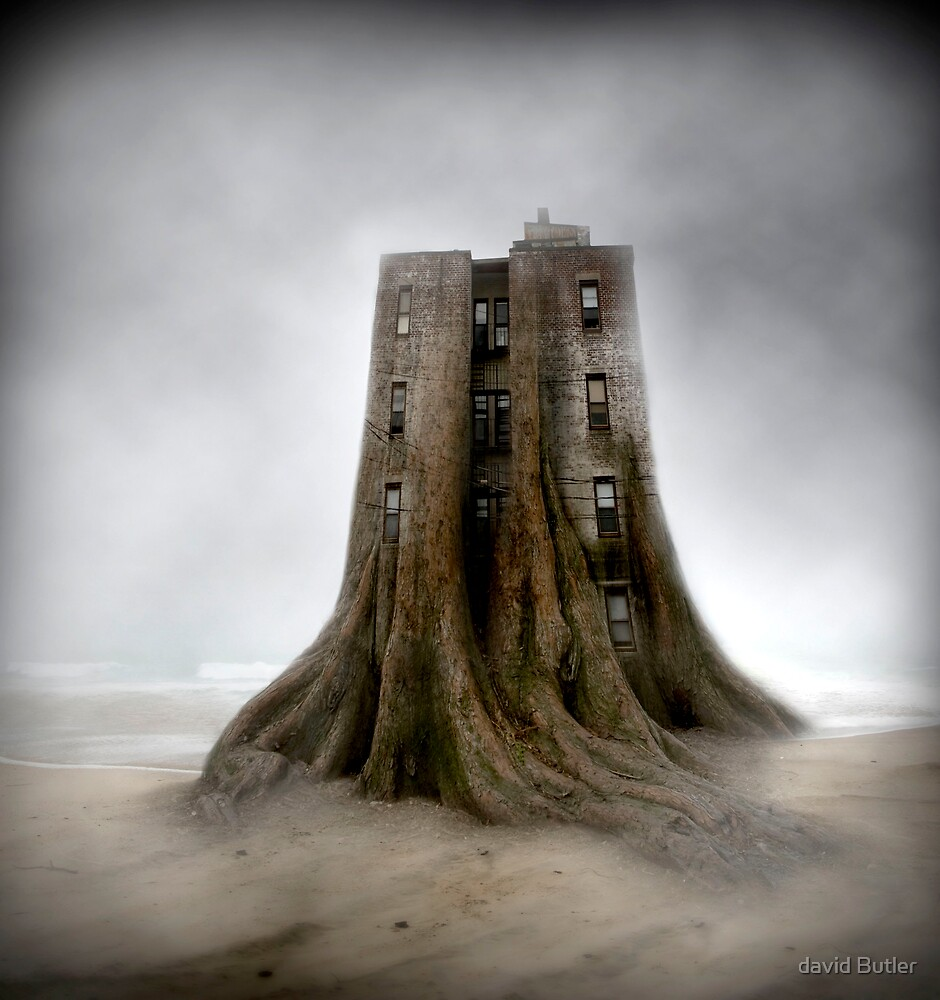 """""""ROOTS"""" by david Butler"""